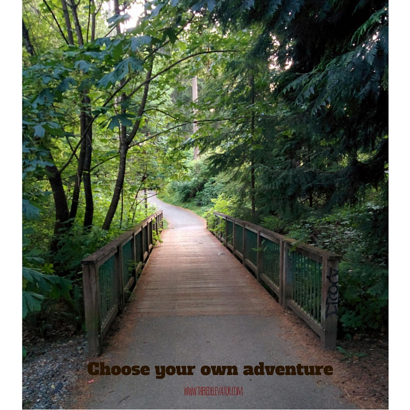 Choose your own adventure www.theredelevator.com
